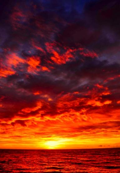 Sun rising for Vitamin D