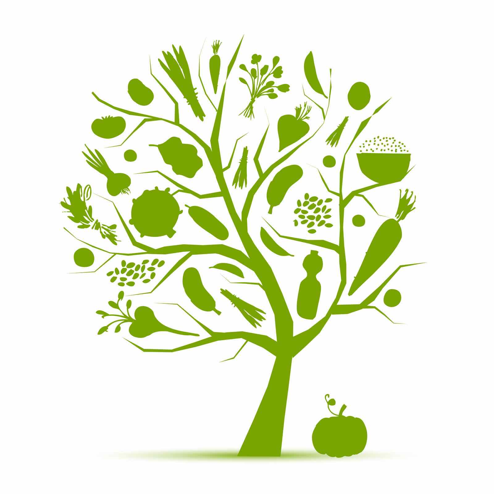 Antioxidants tree of life