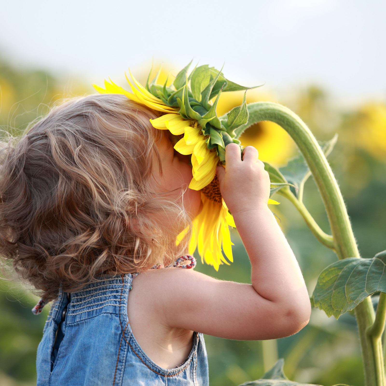 Child embracing flower