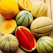 Melons for antioxidant supplementation